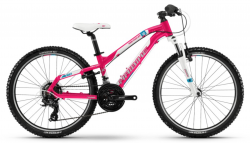 Haibike SEET HardFour Life 1.0 24R Kinder Mountain Bike 2018