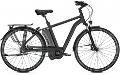 Raleigh Boston R Premium Impulse Elektro Fahrrad 2018