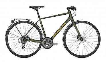 Focus Arriba 3.9 Fitness Bike 2019