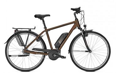 Raleigh Jersey 8 Bosch Elektro Fahrrad 2019