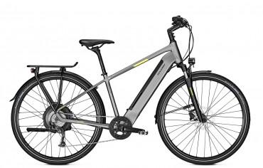 Raleigh Stanton 9 Neodrives Elektro Fahrrad 2019