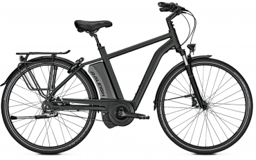 Raleigh Boston Premium Impulse Elektro Fahrrad 2018