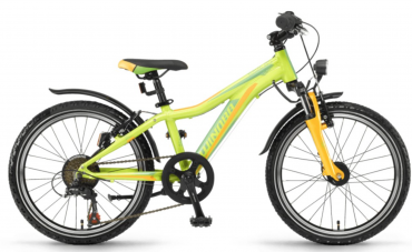 Winora Rage 20 Kinder Mountain Bike 2018