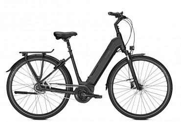 Raleigh Bristol 8R Bosch Elektro Fahrrad 2019