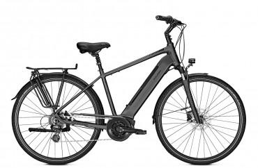 Raleigh Bristol 9 Bosch Elektro Fahrrad 2019