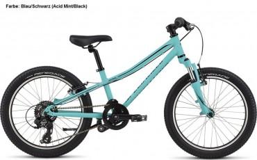 Specialized Hotrock 20 Kinder Fahrrad 2019
