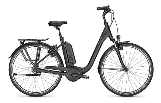 Raleigh Kingston 8 R Bosch Elektro Fahrrad 2020