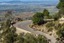 Focus Izalco Race Disc Ultegra Rennrad 2018