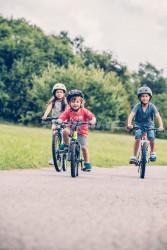Haibike SEET HardFour Life 1.0 Kinder & Jugend Fahrrad 2019