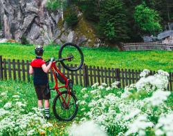 Univega Summit S Edition Shimano Steps Elektro Fahrrad 2019