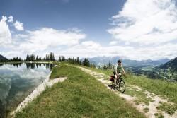 vsf fahrradmanufaktur T-100 Shimano Alivio 27-G HS11 Trekking Bike 2019