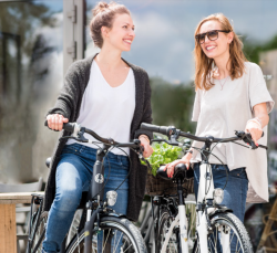 Winora Sinus Tria N7f Bosch Elektro Fahrrad 2019