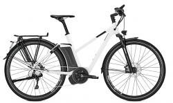 Raleigh Ashford S10 Impulse Elektro Fahrrad 2018
