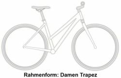 Rabeneick TC5 Nexus Premium Trekking Bike 2018