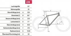Winora Radius Tour Yamaha Elektro Fahrrad 2019