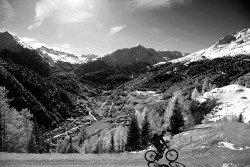 Focus Jarifa Bosch Donna Elektro Fahrrad/27.5R Mountain eBike 2017