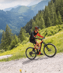 KTM Prowler 292 12 Fullsuspension Mountain Bike 2019