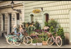 Kellys Avenue 70 City Bike 2019