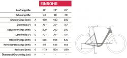 Winora Saya N7f 400Wh Bosch Elektro Fahrrad 2019