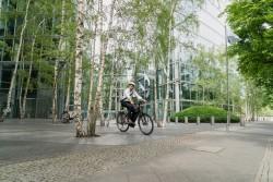 Kalkhoff Image 5.B Move R Bosch Elektro Fahrrad 2019
